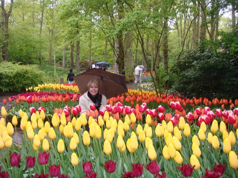 Tiptoe through the tulips - Amsterdam