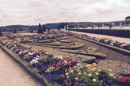 versailles garden , Lara S - August 2015