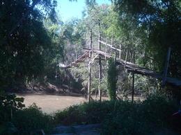 The final obstacle a swinging bamboo bridge. , Robert L - December 2016