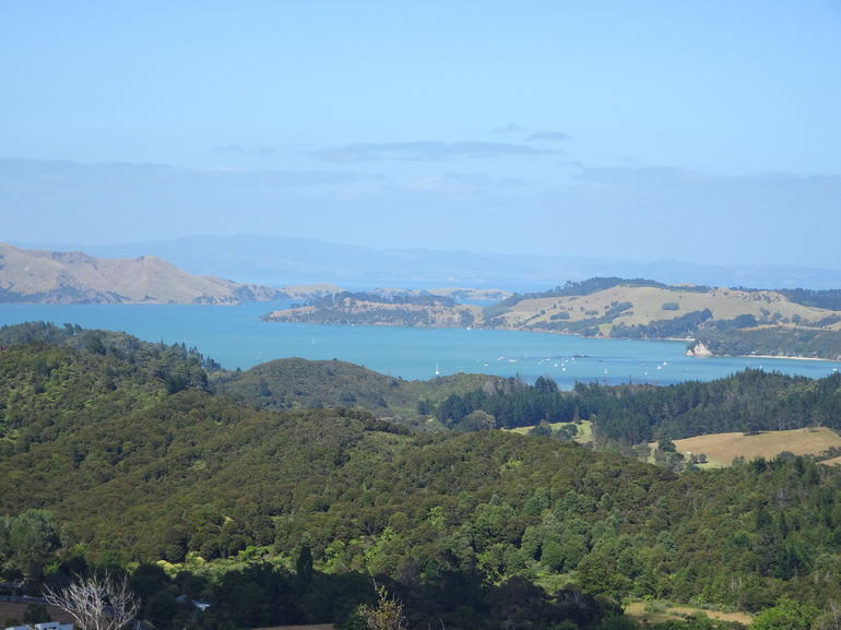 Small-Group Coromandel Peninsula Day Trip from Auckland