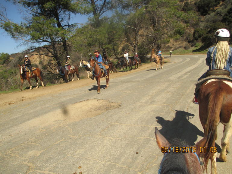 Horseback Riding near the Hollywood Sign with Transportation from Anaheim