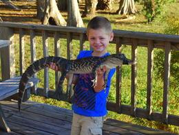 Florida Everglades Airboat Tour and Alligator Encounter - October 2013