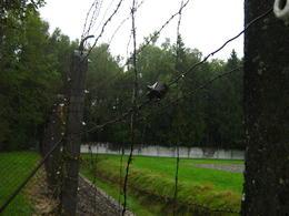 electric fence . , fotomom - September 2011
