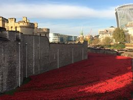 The moat of the Tower of London filled with ceramic poppies, Nick - November 2014