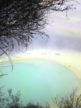 Rotorua's Thermal Wonderland provided a walk through an active Earth. The Artist's Palette shows a myriad of chemically- induced pools of color. , Laurie B - July 2012