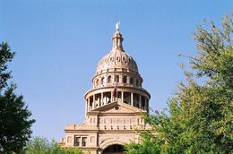 State Capitol in Austin, Cat - November 2012
