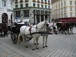 The horse drawn carriages of Vienna are delightful. This one was parked near the Hoffburg Palace, Michael H - October 2008