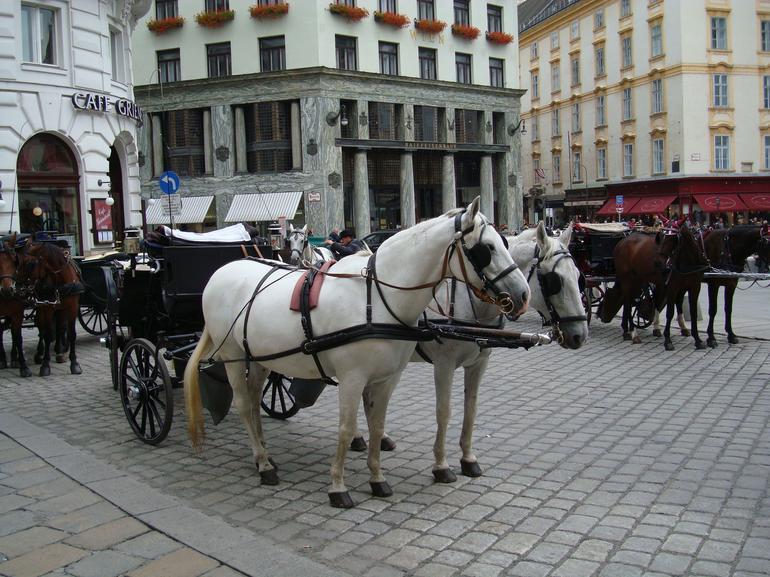 A Viennese Fiaker - Vienna
