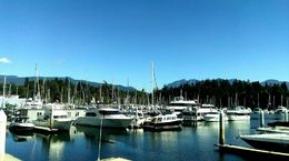 Coal Harbour is the stop before Stanley Park , David Z - July 2016