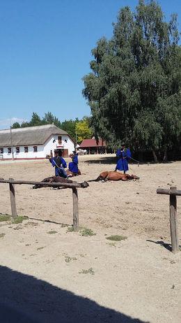 ruiters in nationale klederdracht tonen hoe ruiter en paard mekaar vertrouwen,mooi , Lydie D - August 2015