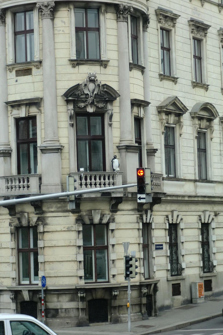 Penguin on a balcony - Vienna