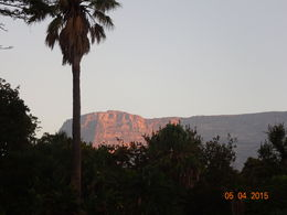 A view of Table Mountain , Renee S - May 2015