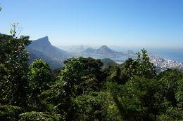 Blick auf Rio , Carsten W - May 2016