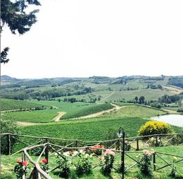 Lunch with an amazing view of Tuscany! , Quee Hao, Sally Y - July 2015