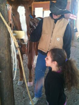 Lasso's harnesses and the horse they rode in on., Travel Mom - May 2012