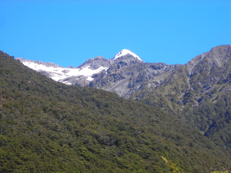 Arthur's Pass National Park with TranzAlpine Train Tour from Christchurch photo 6