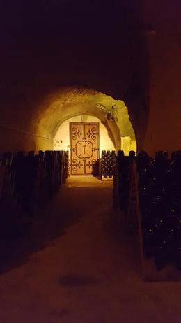 In the cellar at Tattinger , loving_life_1977 - May 2017