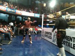 Mexican Wrestling, Fernando Camarate Santos - February 2013