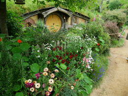 Beautiful garden in front of other hobbit hole , Hunter - December 2016