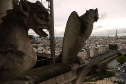 Try to go up and take picture of some gargoyles :) - JD. , JOSHUA A DHARMAWAN - September 2011