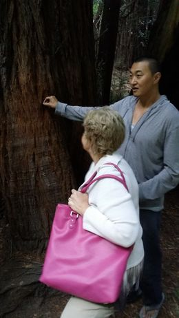 Peace took the time to explain the history of Muir Woods and the best way to enjoy our stay. His knowledge of the park made it so much special. Wonderful guide. , Alfredo B - September 2015