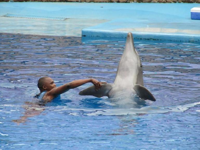 Ushaka Marine World - Durban - Durban