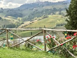 View of San Gimignano from the vinyard where we stopped for lunch. , Maria Z - October 2017
