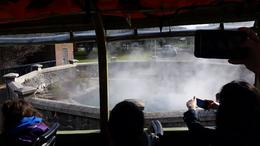 Hot spring in Rotorua. The driver was hilarious! , Jordan P - August 2016