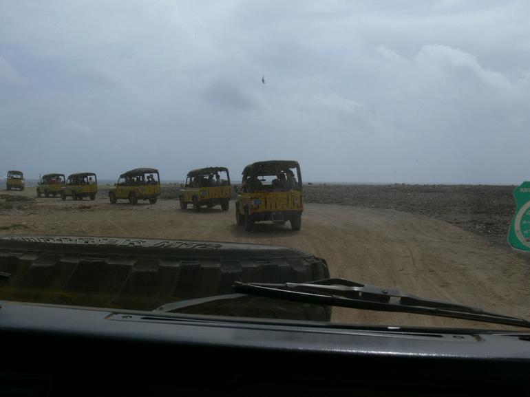 Follow the Leader - Aruba