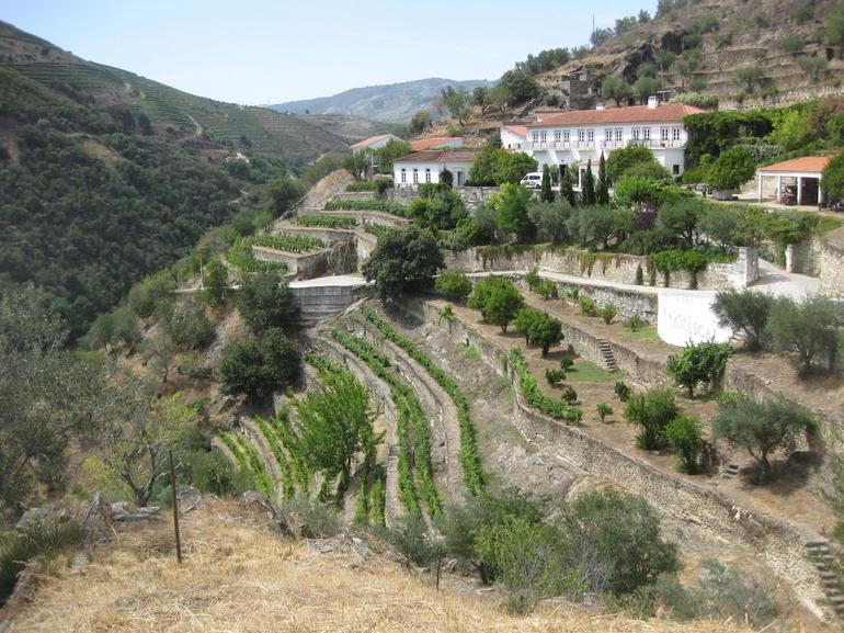 Fonseca Quinta - Northern Portugal