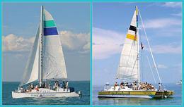 Catamaran snorkel tours to John Pennecame reef , sarahecho - November 2012