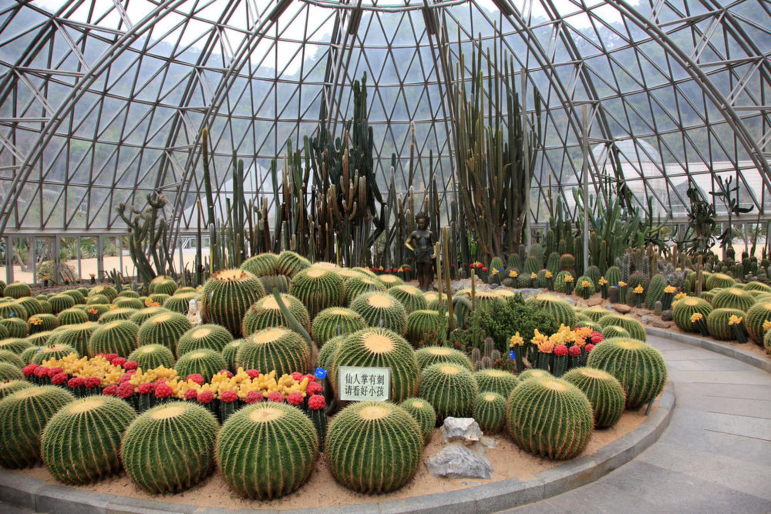 MÁS FOTOS, Shenzhen Sightseeing and Shopping Tour from Hong Kong