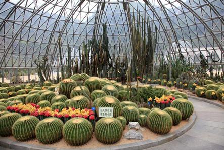 Shenzhen Sightseeing and Shopping Tour from Hong Kong | Viator