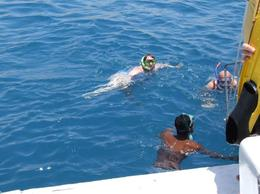 Snorkeling in Ras Mohammed - March 2012