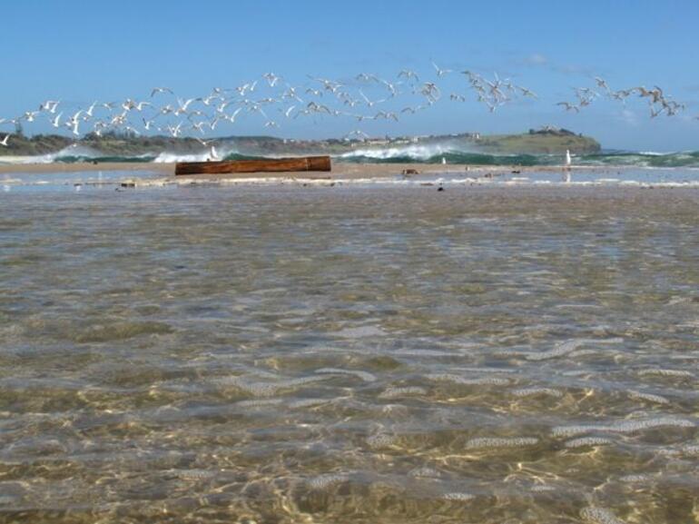 Beach life 2, Byron -