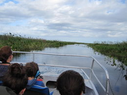 Enjoy the airboat ride! , Tessie F - October 2015