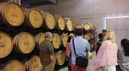 On the tour of the cellar , Kenneth N - June 2016