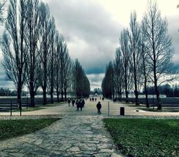 A haunting but very informative trip to Dachau. , Amy F - February 2014
