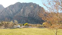Spring Mountain Ranch , Adam M - December 2017