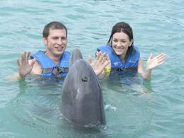 Dolphin swim - singing dolphin! - September 2011