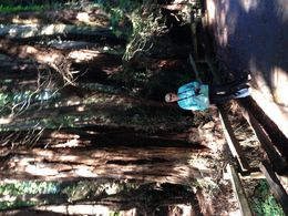 Walking on one of the trails , Caroline W - September 2015
