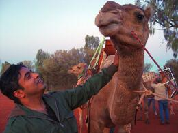 This is was after our ride back at the camel base. You got a chance to pet your camel after the ride. - October 2009