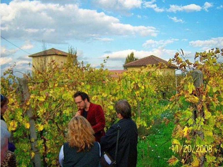 Rome - Frascati Winery Tour - Rome