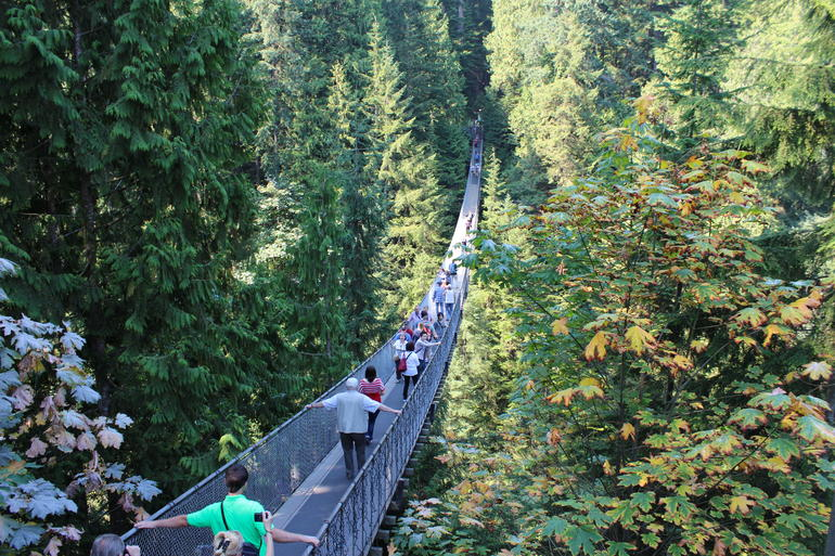 Skip the Line:Capilano Suspension Bridge Park Ticket w/Shuttle from Vancouver photo 29
