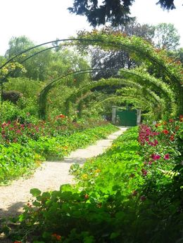 One of the amazing views in Monet's Garden. , Jasmine C - August 2016