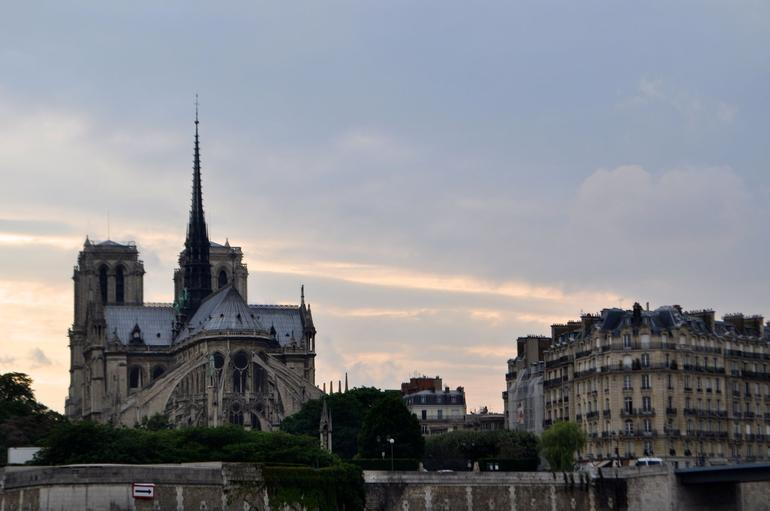View from the boat ride of Notre Dame - Paris