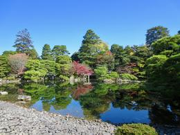 Garden in Kyoto Imperial Palace , Connie S - November 2017