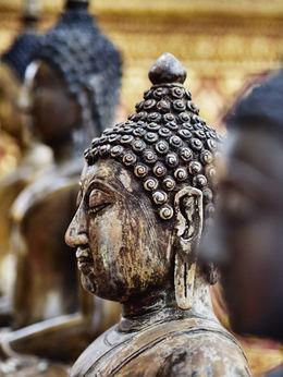 buddha 2 , Robert D - September 2015