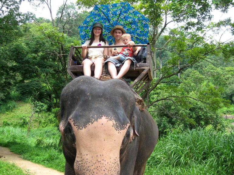 Elephant ride - Chiang Mai