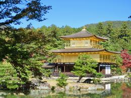 Kinkaku-ji The Golden Pavilion , Connie S - November 2017